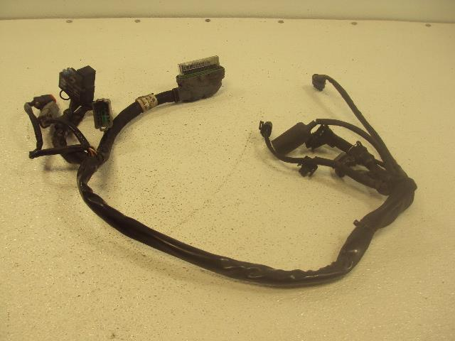 2004 Harley Davidson Flhr Touring Road King Wire Harness Engine Ecu Ecm 7023304: Harley Flh Wire Harness At Outingpk.com